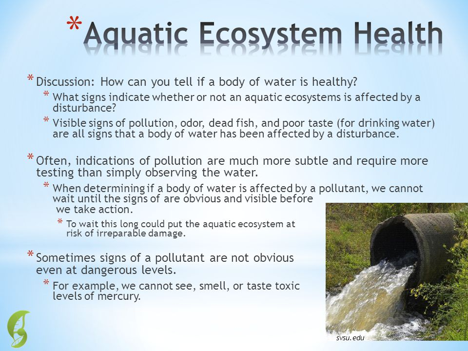 Aquatic Ecosystem Health