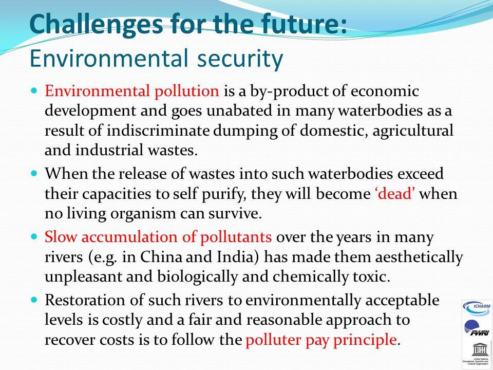 Challenges for the future: Environmental security