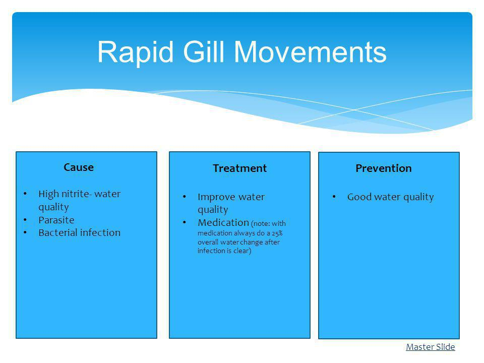 Rapid Gill Movements Cause Treatment Prevention