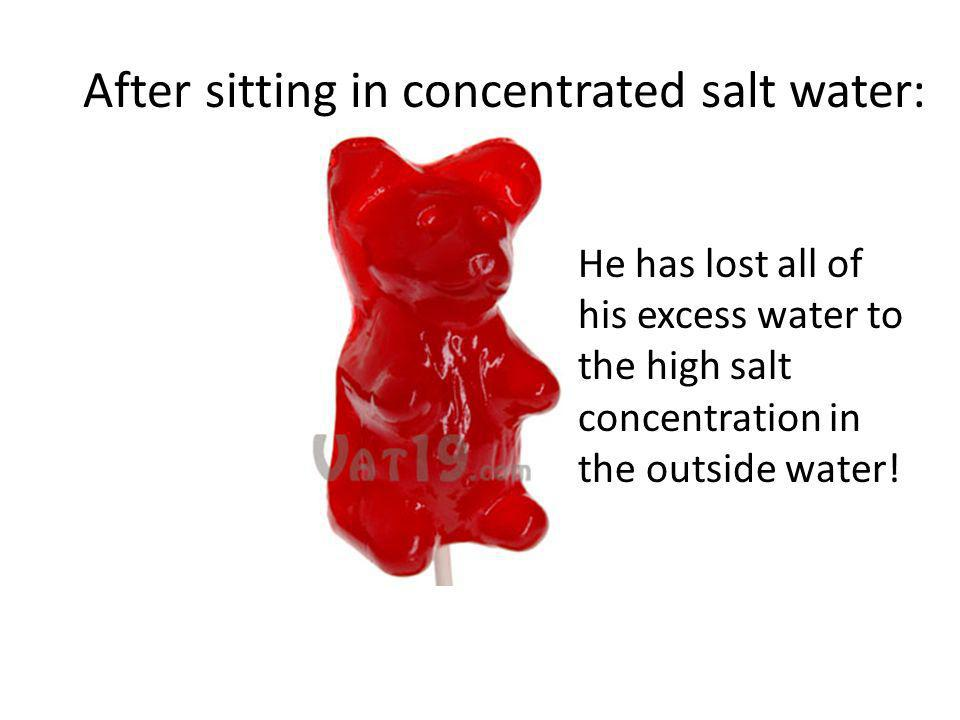 After sitting in concentrated salt water: