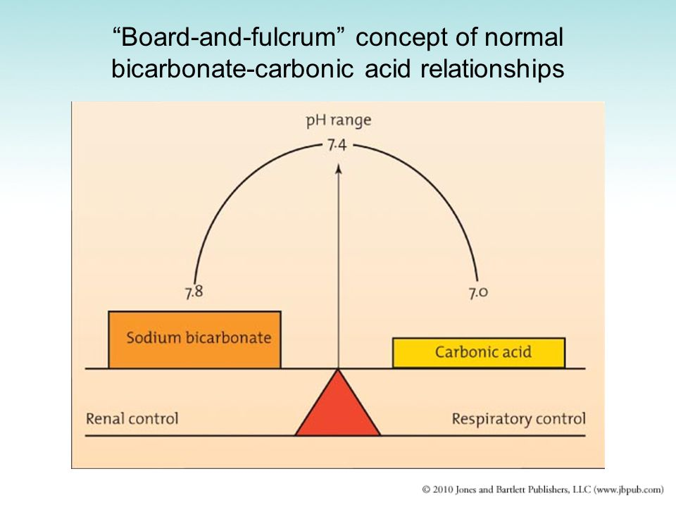 Board-and-fulcrum concept of normal bicarbonate-carbonic acid relationships