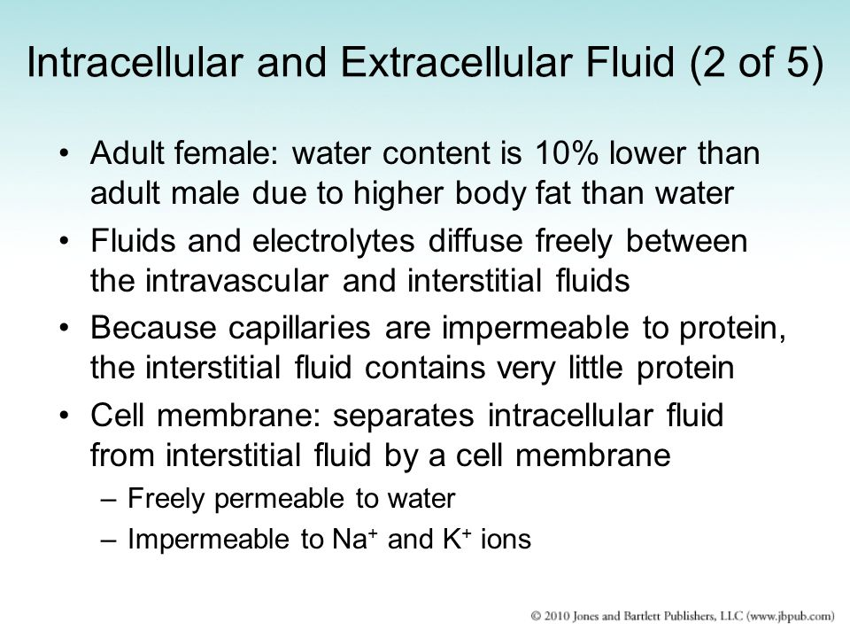 Intracellular and Extracellular Fluid (2 of 5)