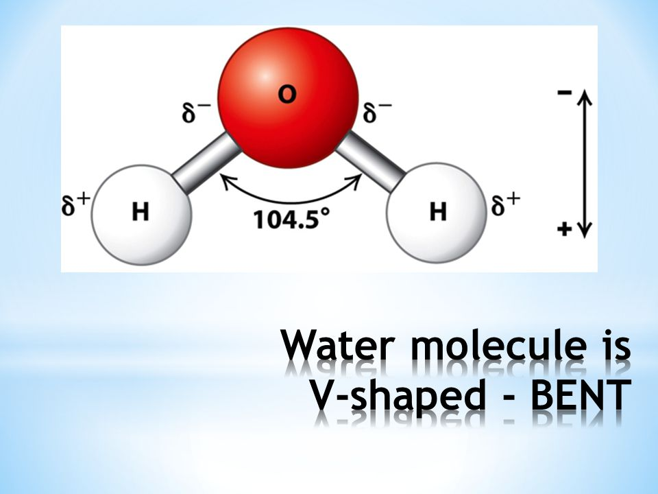 Water molecule is V-shaped - BENT