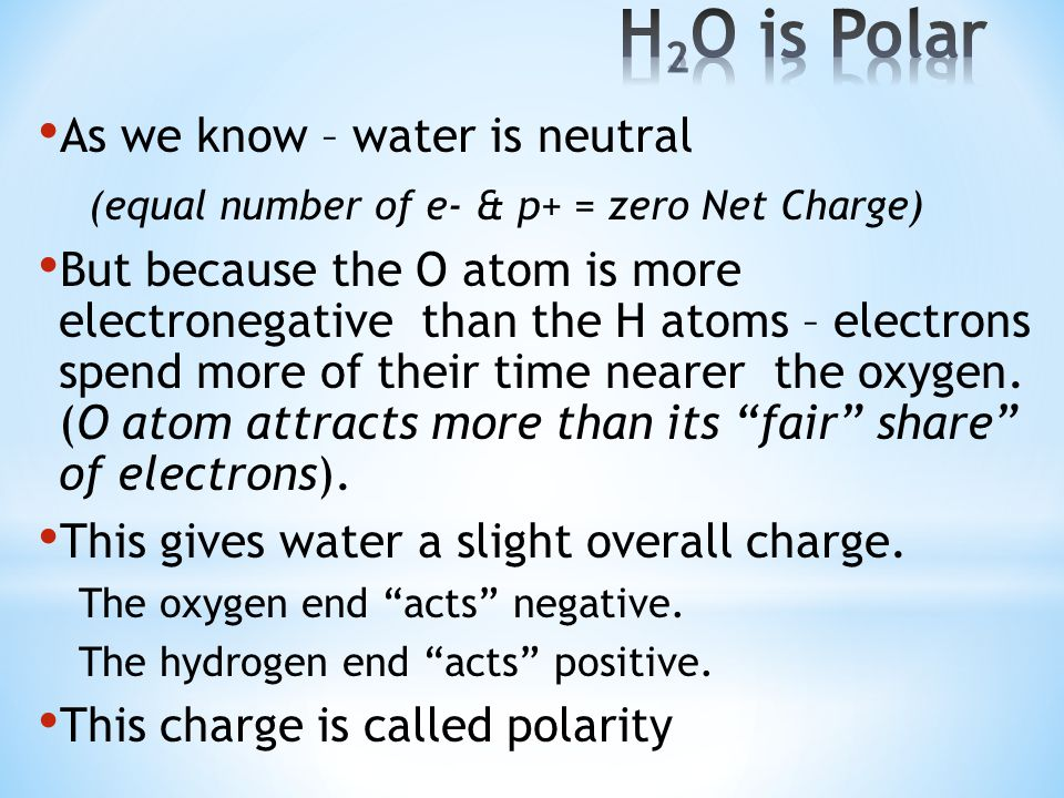 H2O is Polar As we know – water is neutral