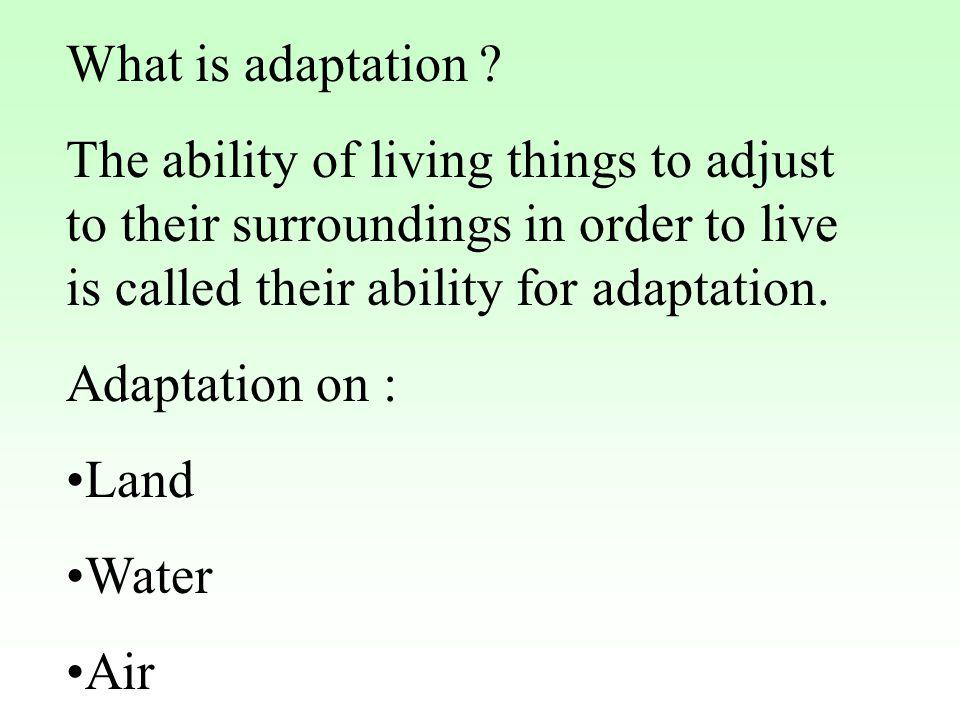 What is adaptation The ability of living things to adjust to their surroundings in order to live is called their ability for adaptation.