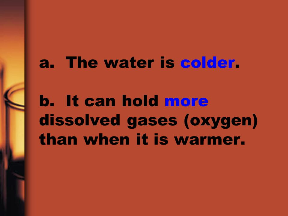 a. The water is colder. b. It can hold more dissolved gases (oxygen) than when it is warmer.