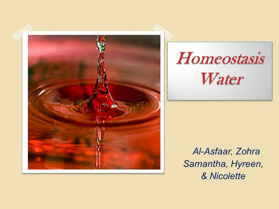 Homeostasis Water Al-Asfaar, Zohra Samantha, Hyreen, & Nicolette