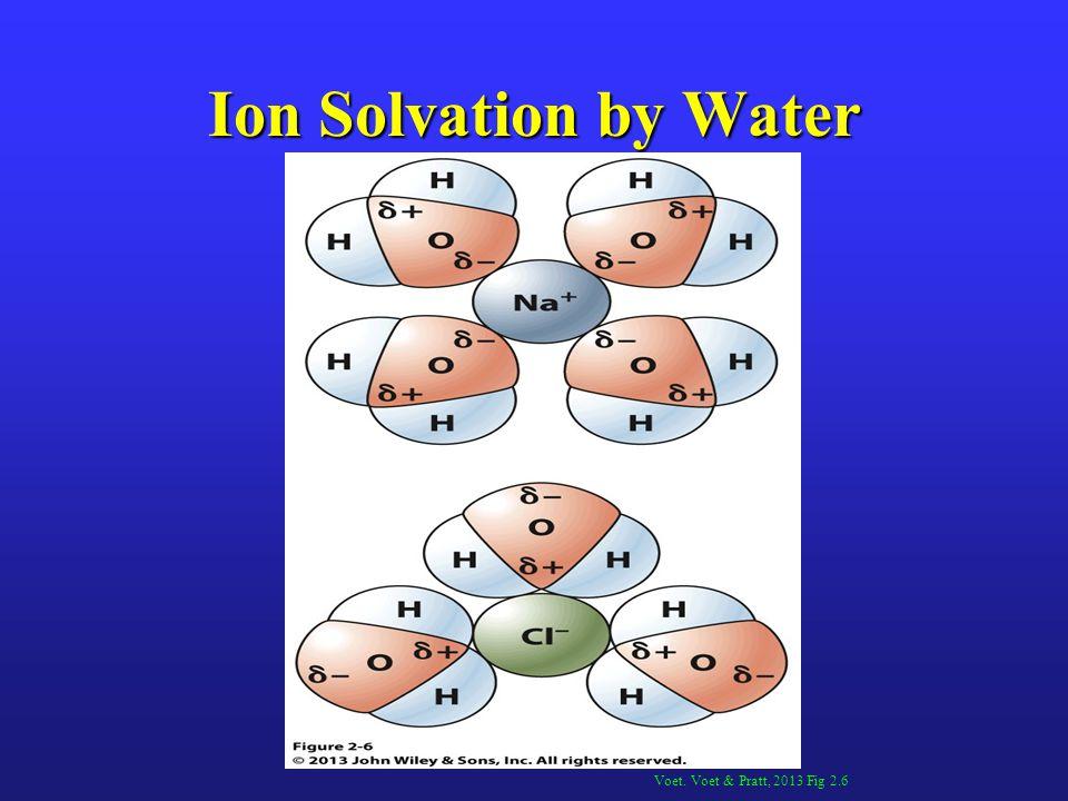 Ion Solvation by Water Voet. Voet & Pratt, 2013 Fig 2.6