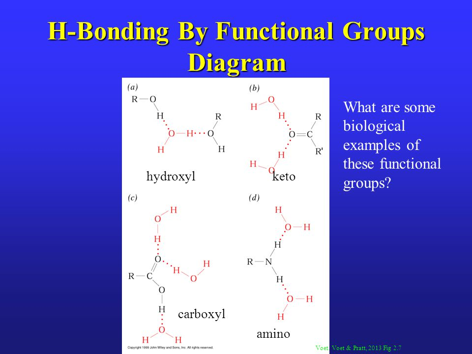 H-Bonding By Functional Groups Diagram