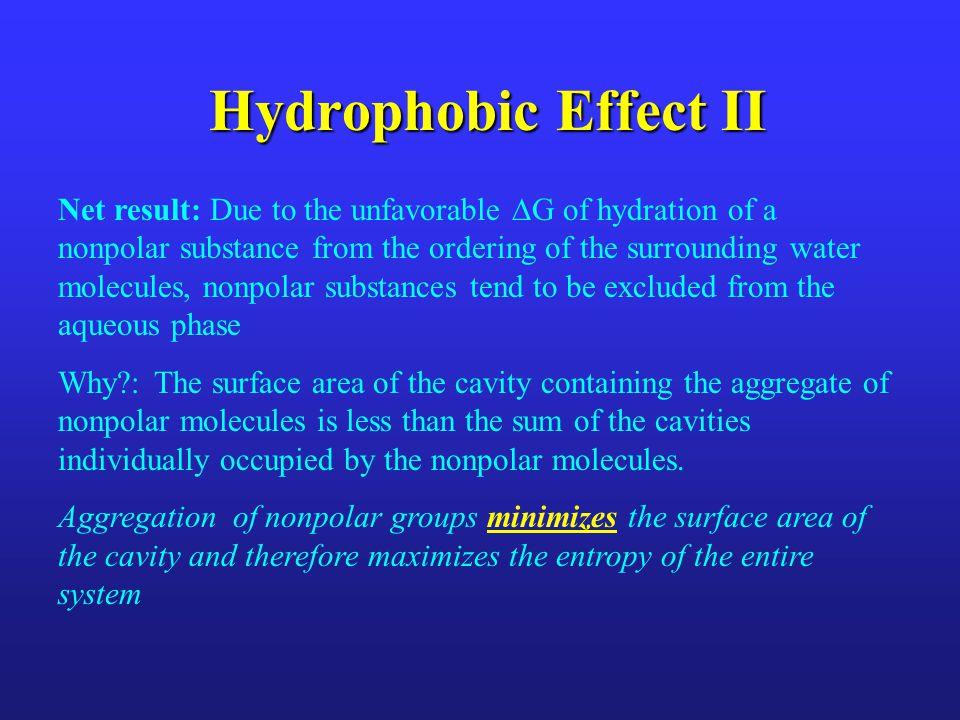 Hydrophobic Effect II