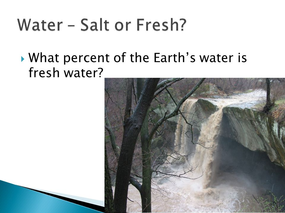 Water – Salt or Fresh What percent of the Earth's water is fresh water