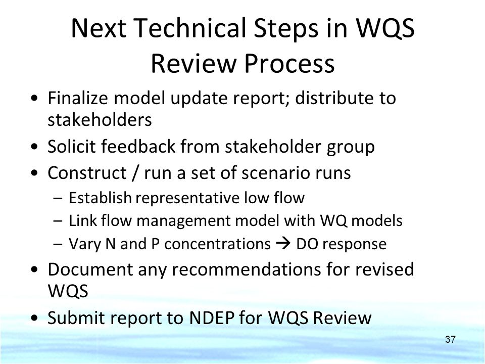 Next Technical Steps in WQS Review Process