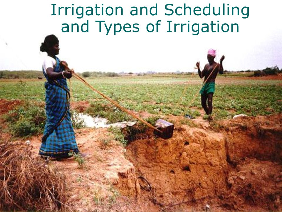 Irrigation and Scheduling and Types of Irrigation