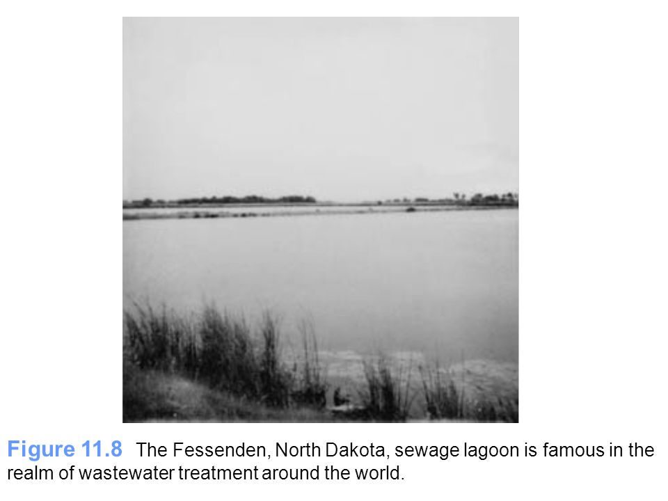 Figure 11.8 The Fessenden, North Dakota, sewage lagoon is famous in the realm of wastewater treatment around the world.