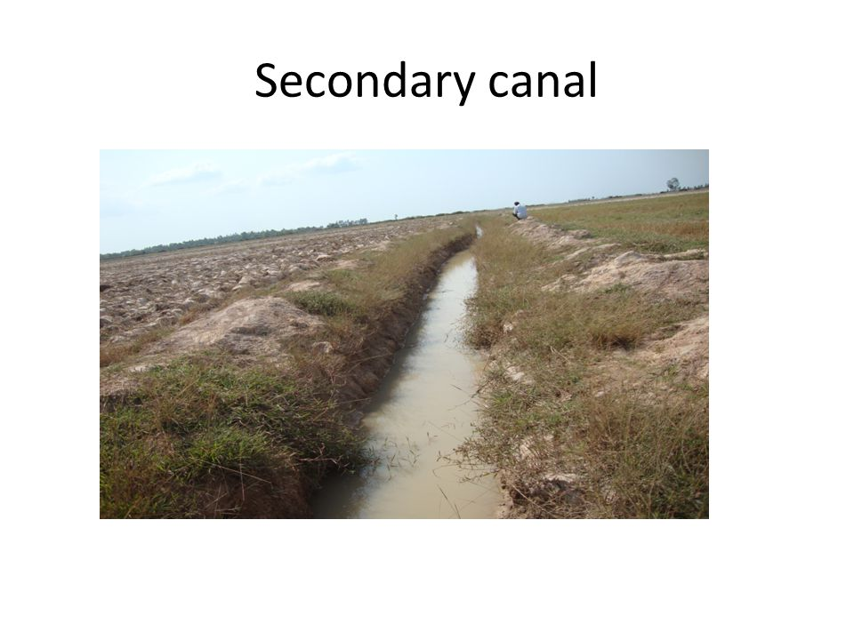 Secondary canal