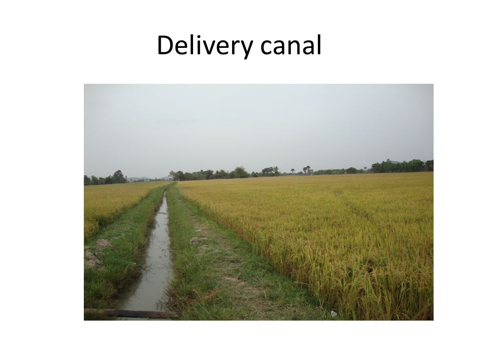 Delivery canal