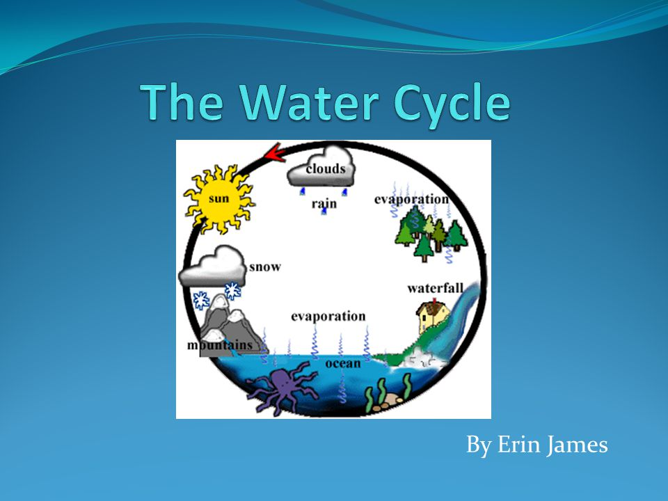 The Water Cycle By Erin James