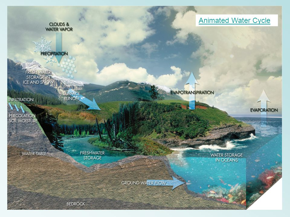 Animated Water Cycle