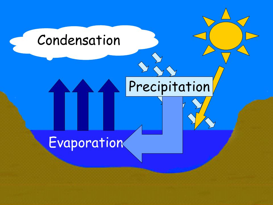 Condensation Precipitation Evaporation
