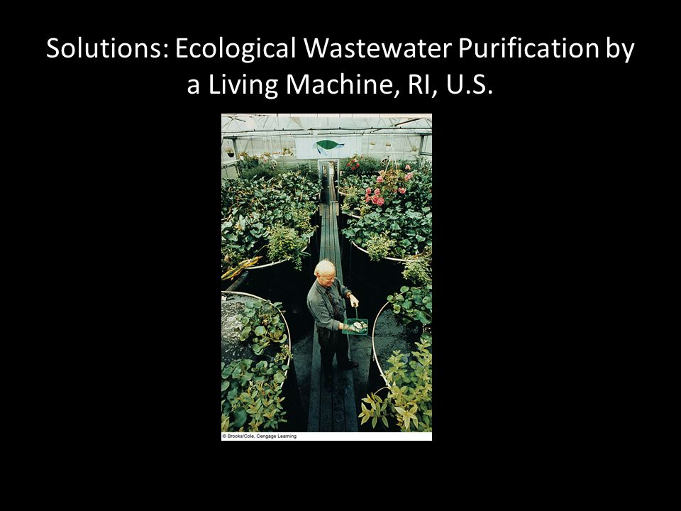 Solutions: Ecological Wastewater Purification by a Living Machine, RI, U.S.