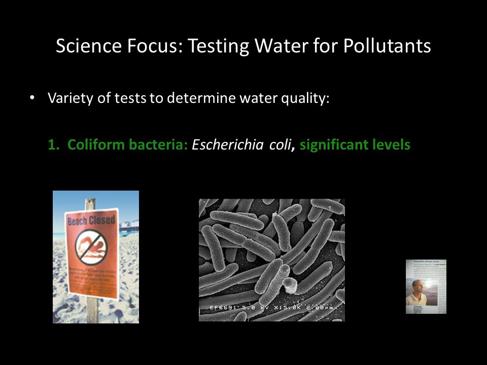 Science Focus: Testing Water for Pollutants