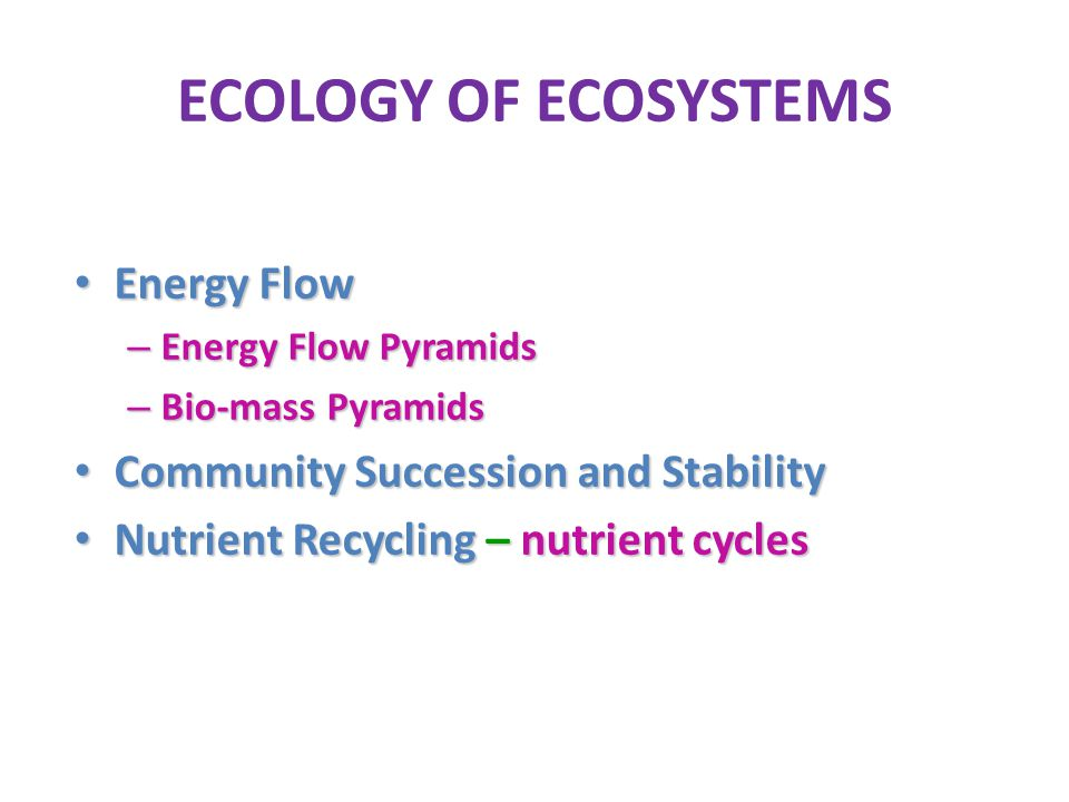 ECOLOGY OF ECOSYSTEMS Energy Flow Community Succession and Stability