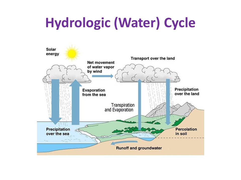Hydrologic (Water) Cycle