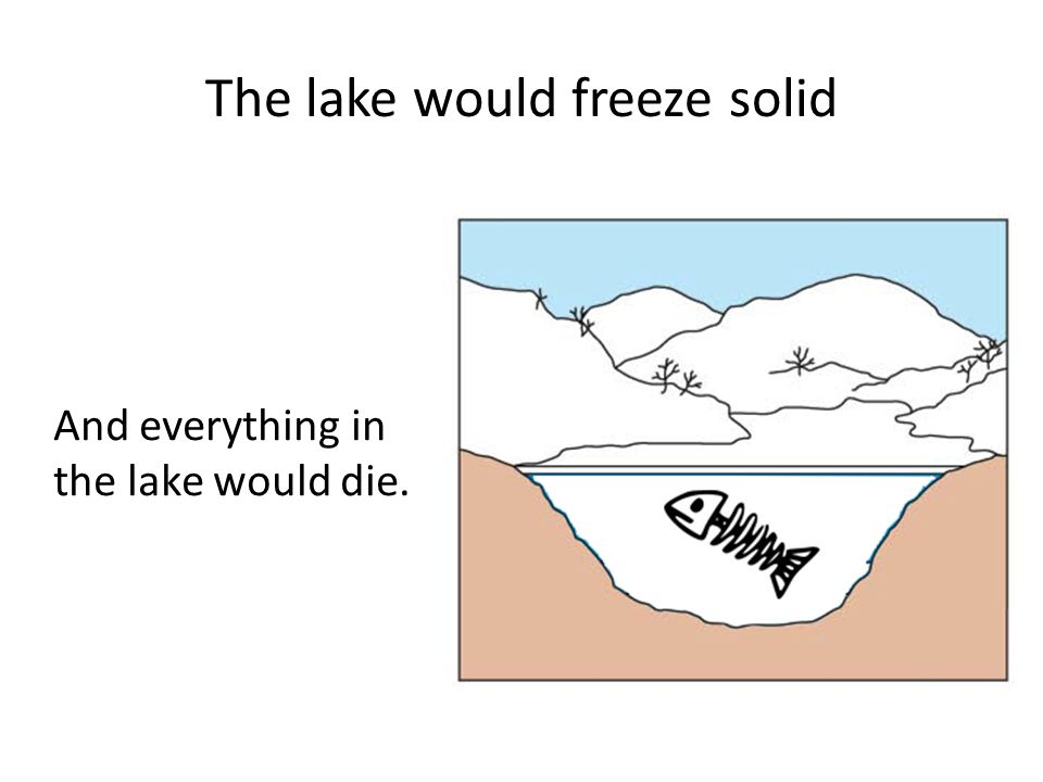 The lake would freeze solid