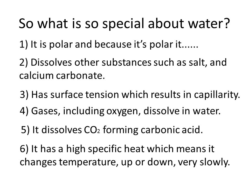 So what is so special about water