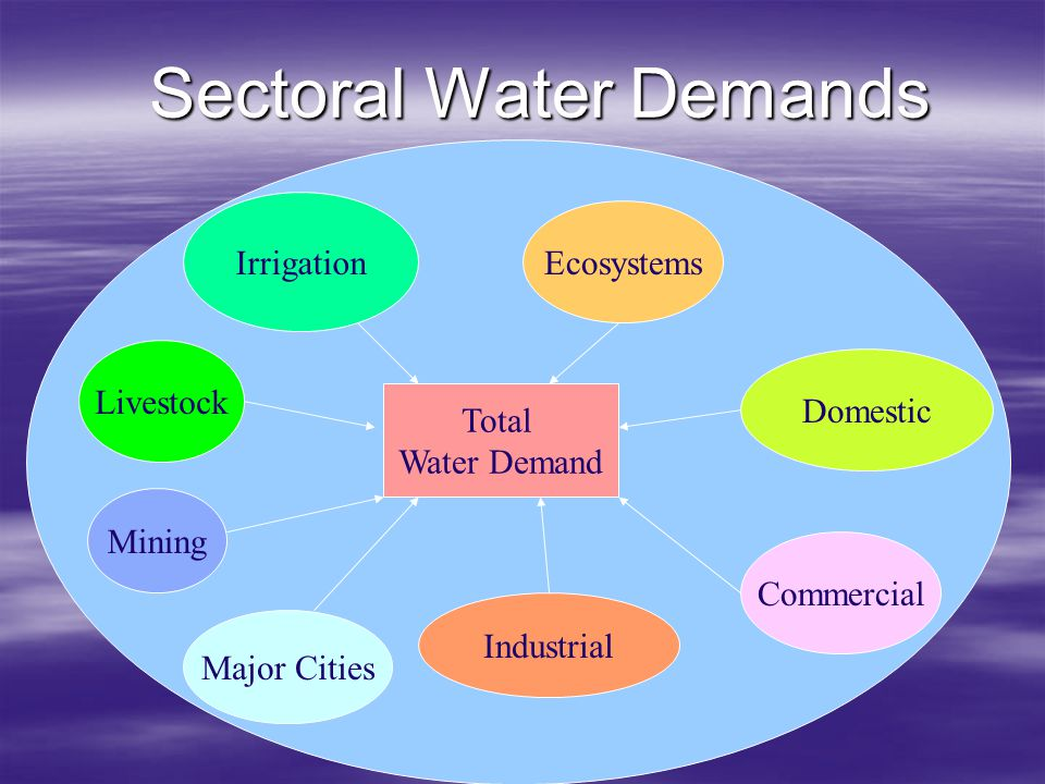 Sectoral Water Demands