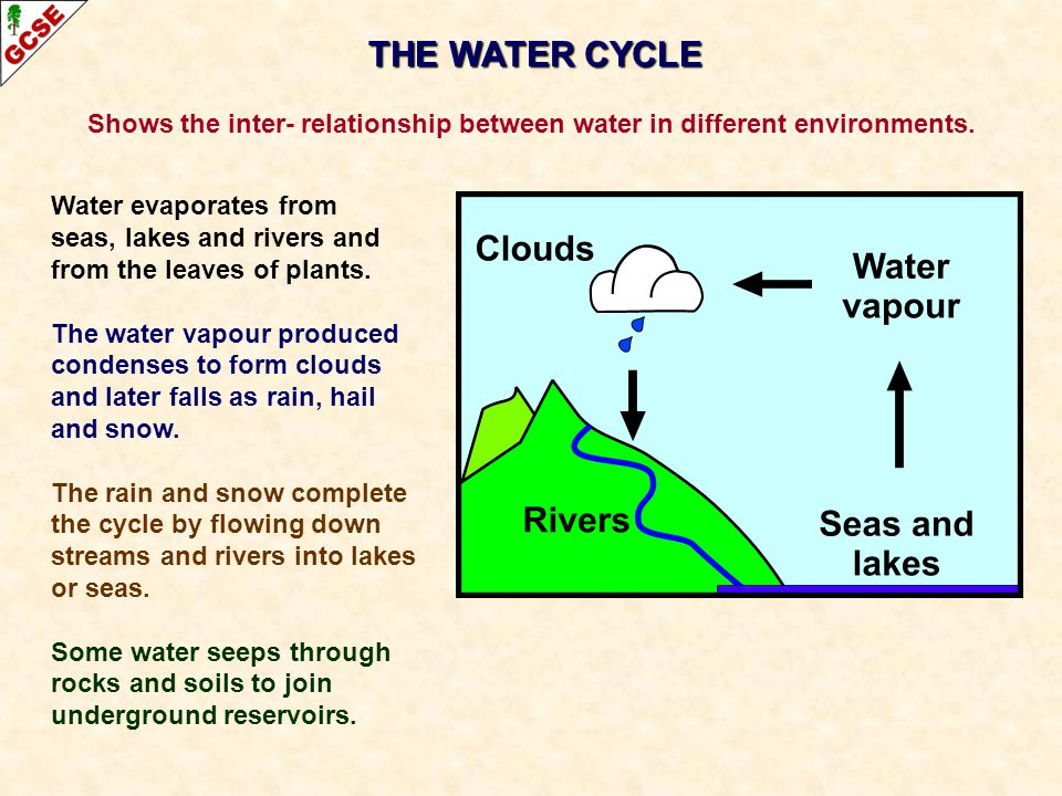 Shows the inter- relationship between water in different environments.