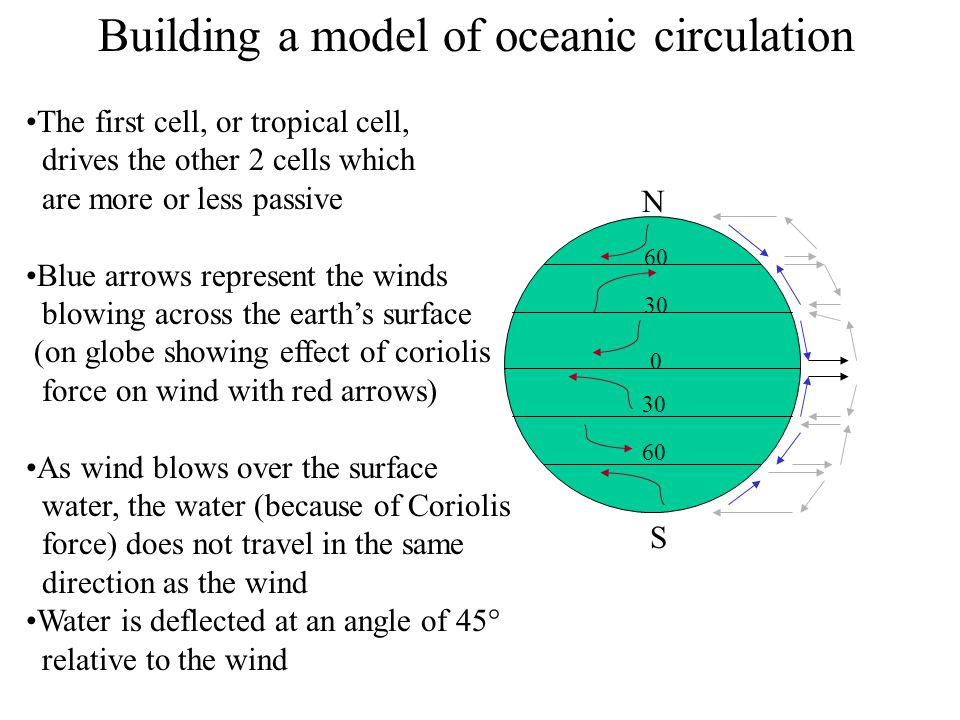 Building a model of oceanic circulation
