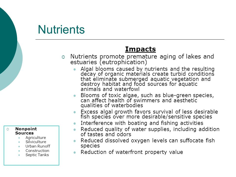 Nutrients Impacts. Nutrients promote premature aging of lakes and estuaries (eutrophication)