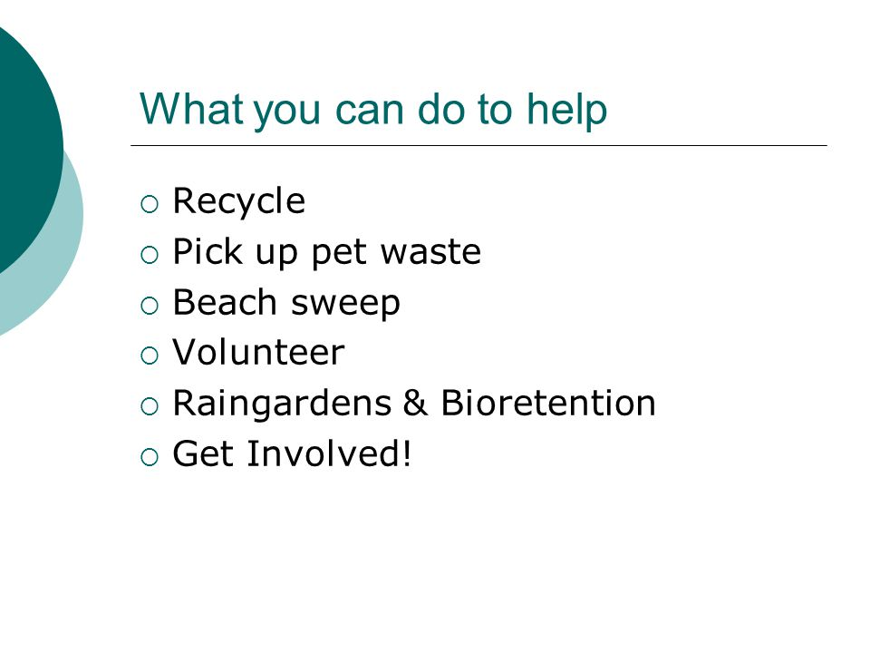 What you can do to help Recycle Pick up pet waste Beach sweep