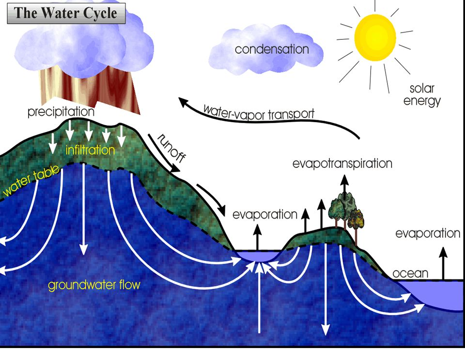 Quick review of the water cycle shows