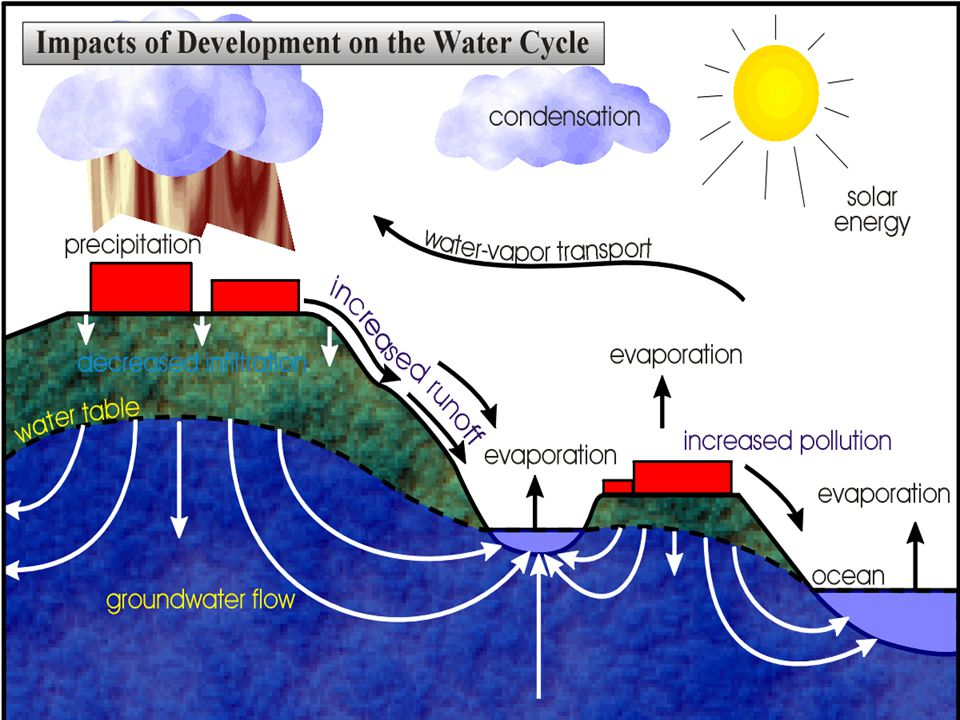 As we develop and alter the landscape, this natural cycle is disturbed, impacting both water quality and water quantity.