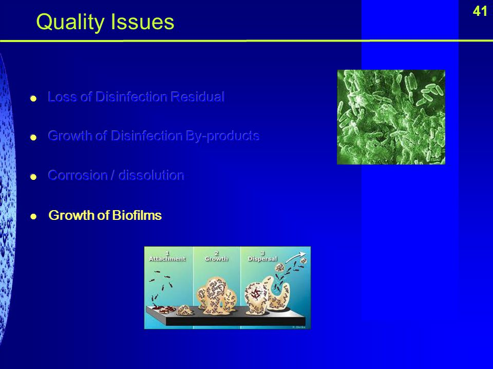 Quality Issues 41 Loss of Disinfection Residual