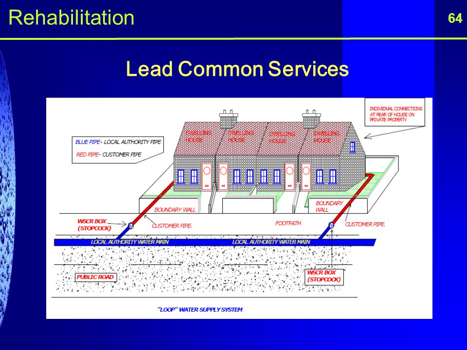 Rehabilitation 64 Lead Common Services