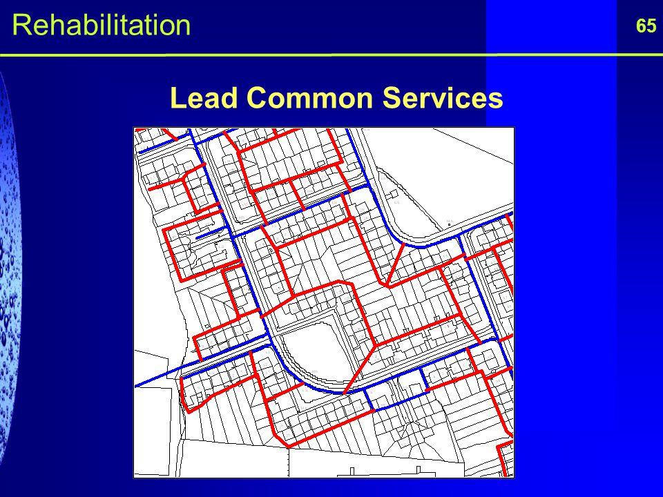 Rehabilitation 65 Lead Common Services