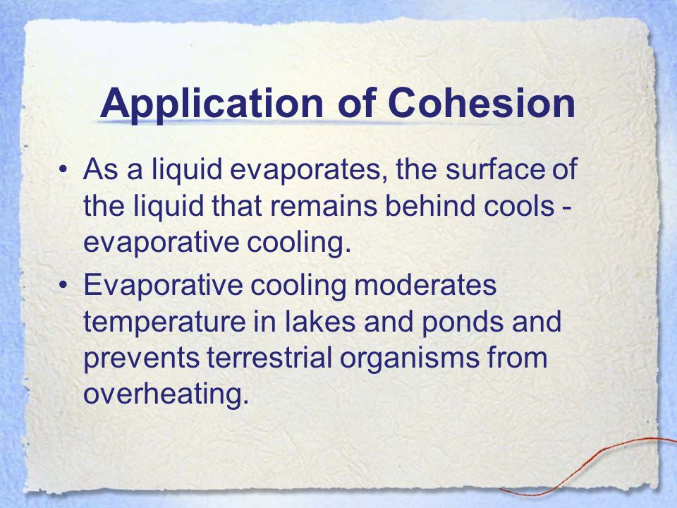 Application of Cohesion