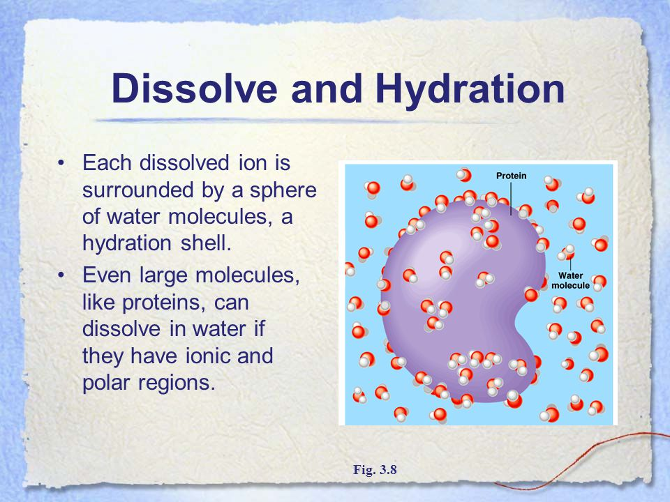 Dissolve and Hydration