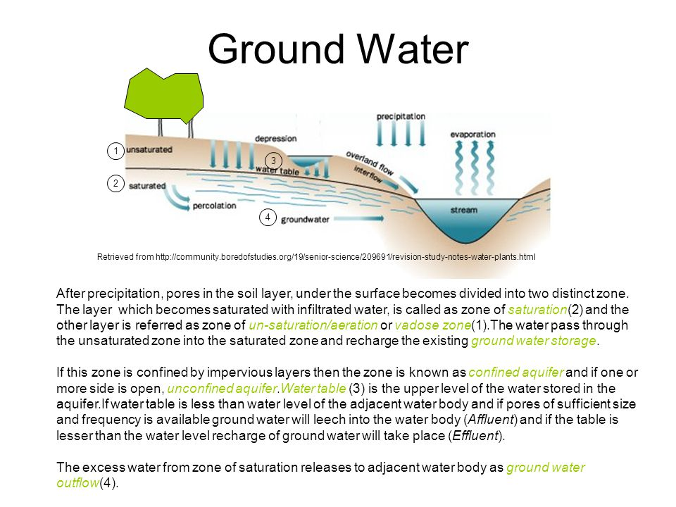 Ground Water 1. 3. 2. 4. Retrieved from http://community.boredofstudies.org/19/senior-science/209691/revision-study-notes-water-plants.html.
