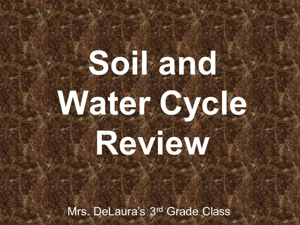 Soil and Water Cycle Review