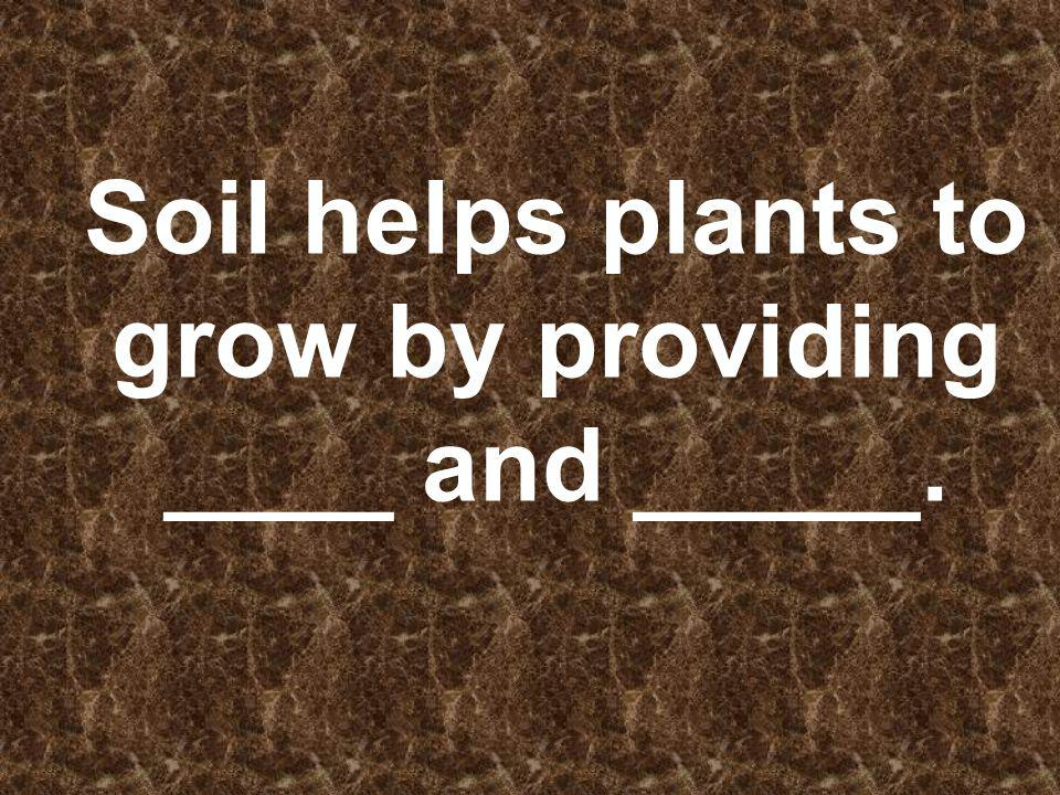 Soil helps plants to grow by providing ____ and _____.