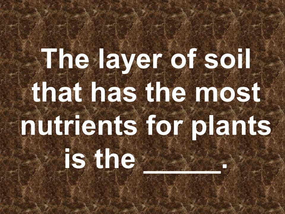 The layer of soil that has the most nutrients for plants is the _____.