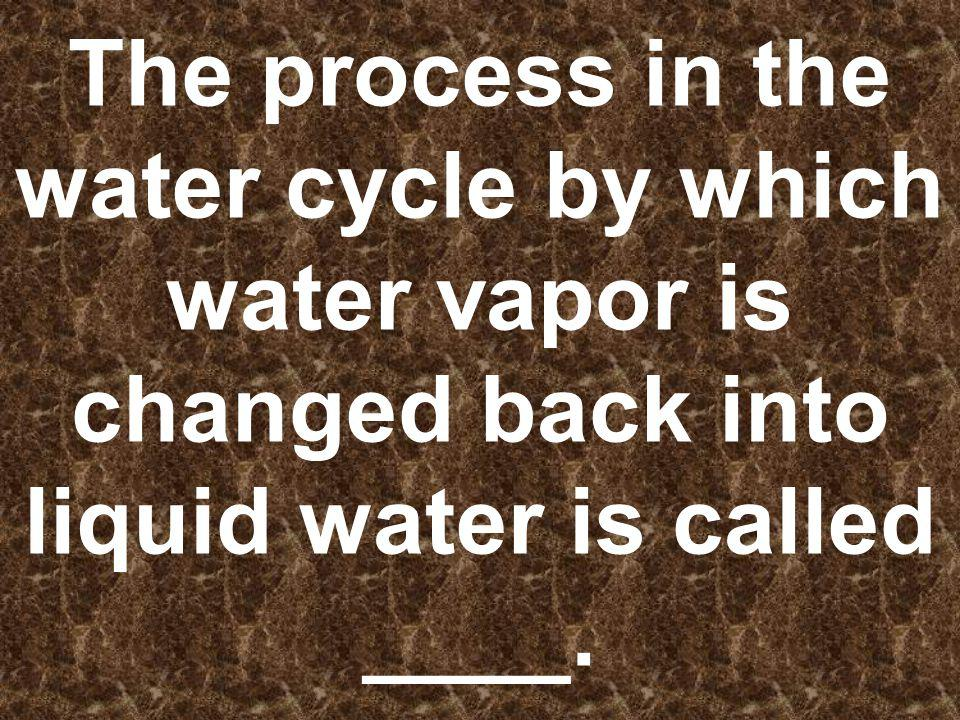 The process in the water cycle by which water vapor is changed back into liquid water is called ____.