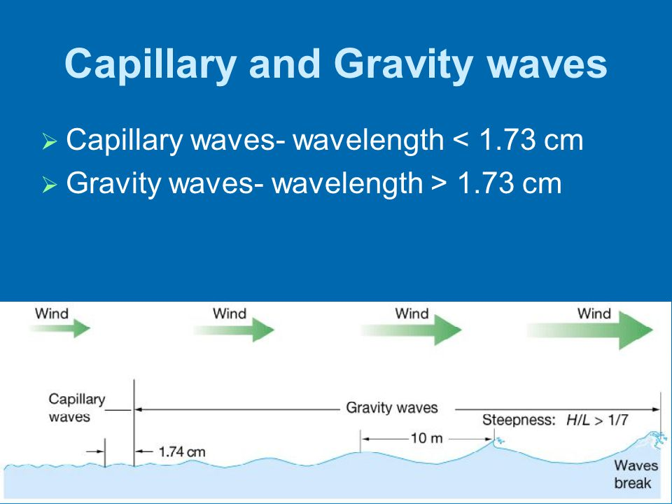 Capillary and Gravity waves