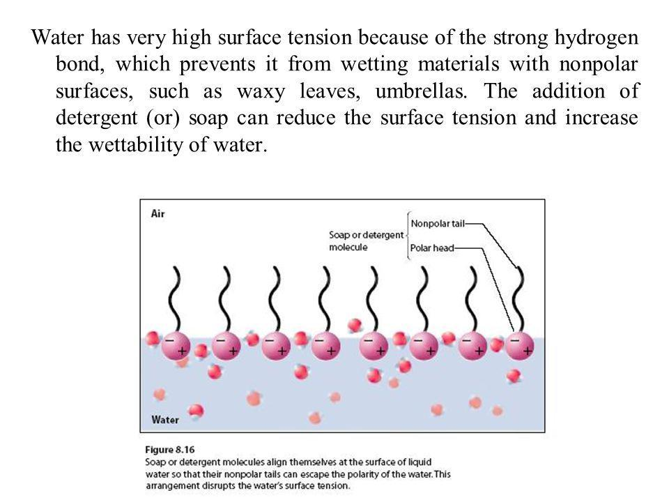 Water has very high surface tension because of the strong hydrogen bond, which prevents it from wetting materials with nonpolar surfaces, such as waxy leaves, umbrellas.