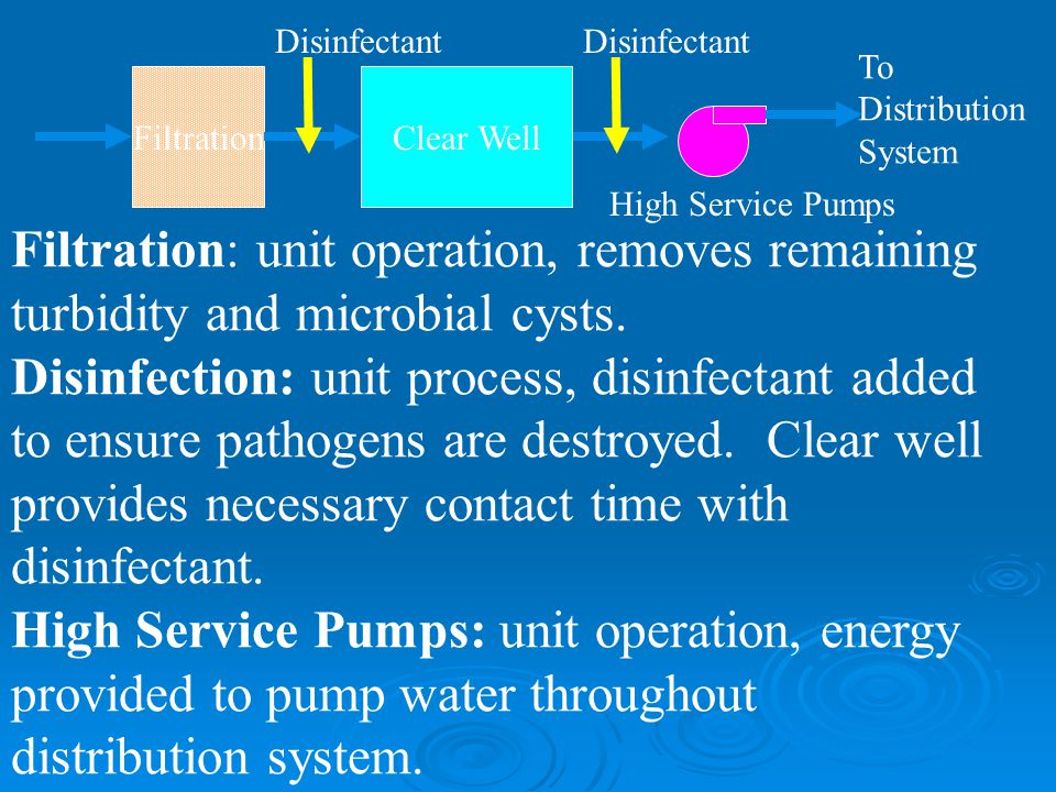 Filtration Clear Well. Disinfectant. High Service Pumps. To. Distribution. System.