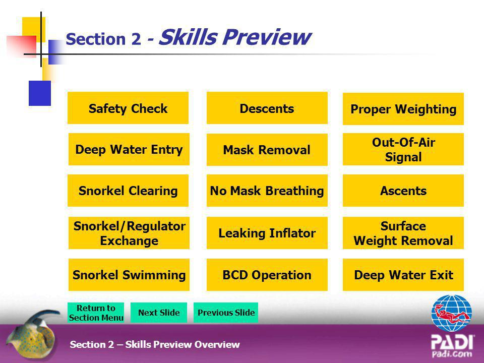 Section 2 - Skills Preview